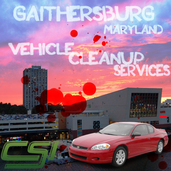 Maryland Vehicle Blood Cleanup